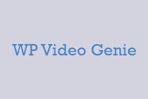 Bonus: WP Video Genie